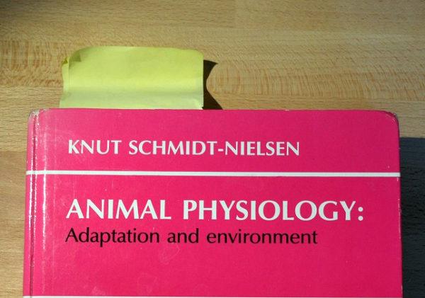 Физиология животных: приспособляемость и среда